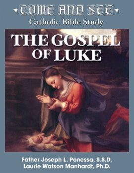 Come and See: The Gospel of Luke DVD