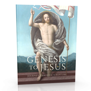Genesis to Jesus Participant Workbook